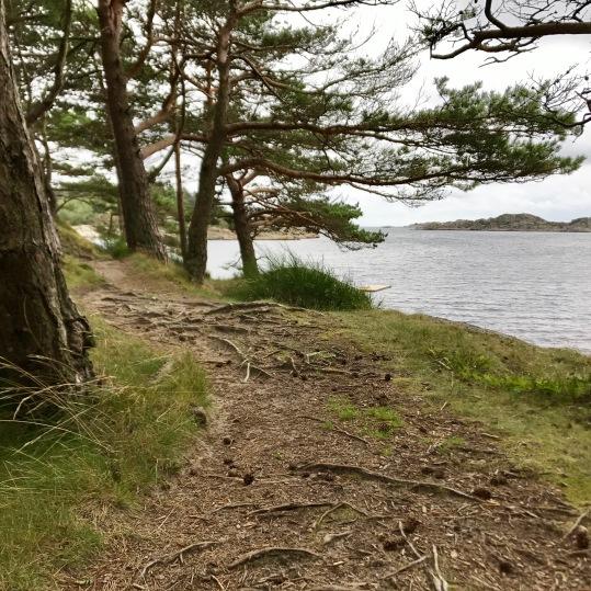 Perfect trails...